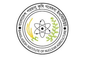 bina- energy bangla